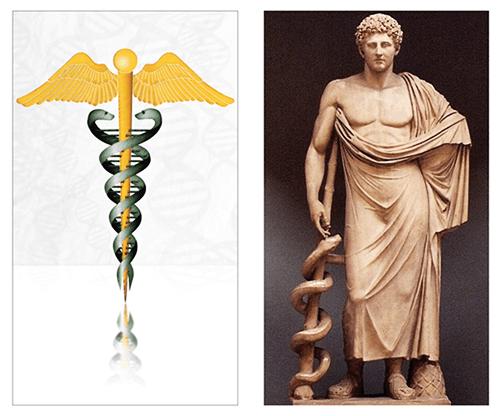 Lý giải vì sao con rắn lại là biểu tượng của ngành Y
