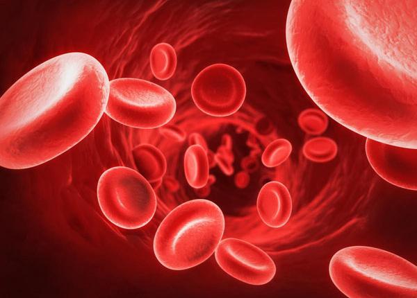 Tìm hiểu nguy cơ từ bệnh thừa sắt cùng chuyên gia Điều dưỡng SG